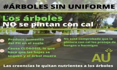 LOS ARBOLES DE UNIFORME.
